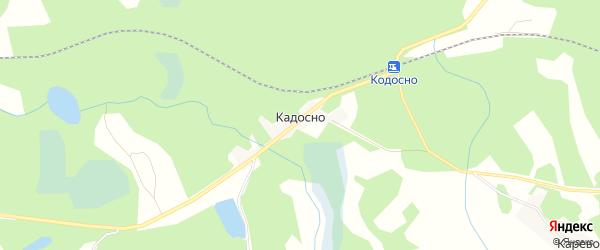 Карта деревни Кадосно в Псковской области с улицами и номерами домов