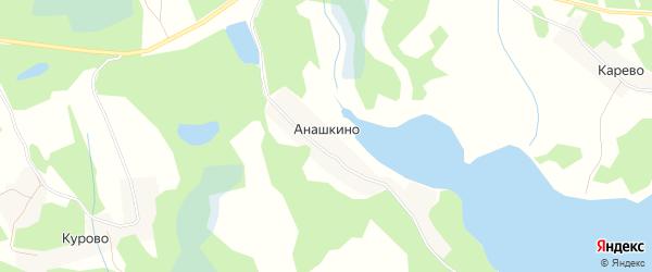 Карта деревни Анашкино в Псковской области с улицами и номерами домов