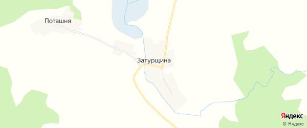 Карта деревни Затурщина в Псковской области с улицами и номерами домов
