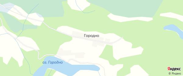 Карта деревни Городно в Псковской области с улицами и номерами домов
