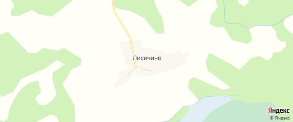 Карта деревни Лисичино в Псковской области с улицами и номерами домов