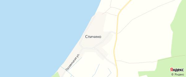 Карта деревни Спичино в Псковской области с улицами и номерами домов