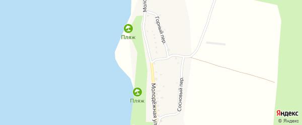 Молодежная улица на карте деревни Нижельского Псковской области с номерами домов