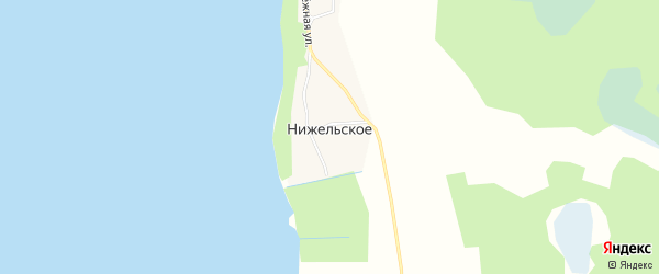 Карта деревни Нижельского в Псковской области с улицами и номерами домов