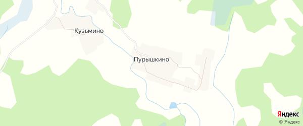 Карта деревни Пурышкино в Псковской области с улицами и номерами домов