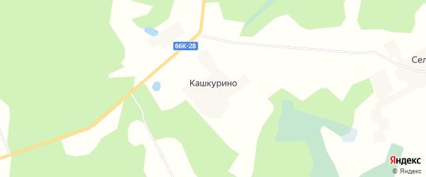 Карта деревни Кашкурино в Смоленской области с улицами и номерами домов