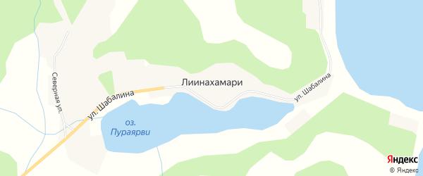 Карта населенного пункта Лиинахамари в Мурманской области с улицами и номерами домов