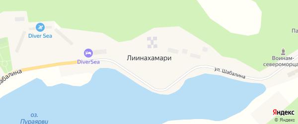 Площадь Бухты Девкина Заводь на карте населенного пункта Лиинахамари Мурманской области с номерами домов