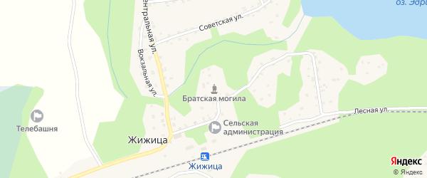 Березовая улица на карте деревни Жижицы Псковской области с номерами домов