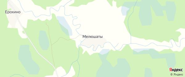 Карта деревни Мелюшаты в Псковской области с улицами и номерами домов