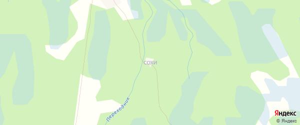 Карта деревни Петухи в Псковской области с улицами и номерами домов