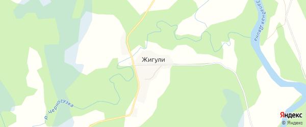 Карта деревни Жигули в Псковской области с улицами и номерами домов