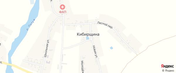 Казенная улица на карте деревни Кибирщины с номерами домов