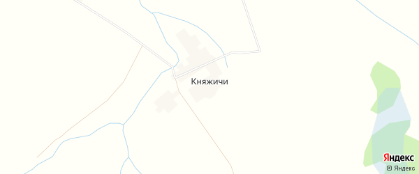 Карта деревни Княжичи в Смоленской области с улицами и номерами домов