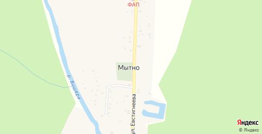 Совхозный переулок в деревне Мытно в Новгородской области с номерами домов на карте. Спутник и схема онлайн