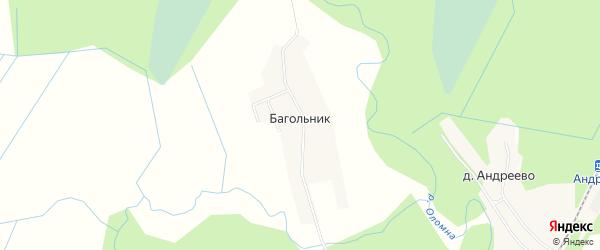 Карта деревни Багольника в Ленинградской области с улицами и номерами домов