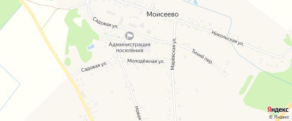 Молодежная улица на карте деревни Моисеево Новгородской области с номерами домов