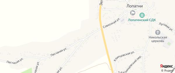Совхозная улица на карте села Лопатни с номерами домов