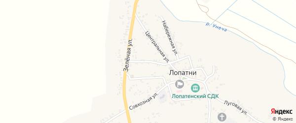 Зеленый переулок на карте села Лопатни с номерами домов