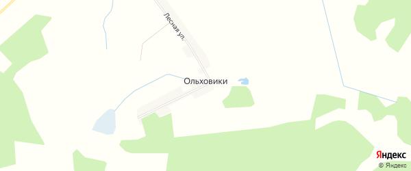 Карта поселка Ольховики в Брянской области с улицами и номерами домов