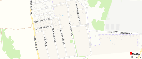 Осенняя улица на карте поселка Первое Маи с номерами домов