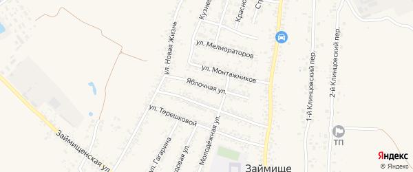Яблочная улица на карте села Займища с номерами домов