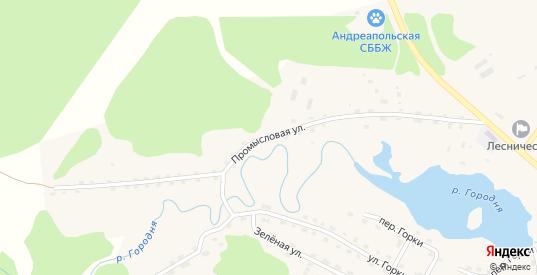 Промысловая улица в Андреаполе с номерами домов на карте. Спутник и схема онлайн