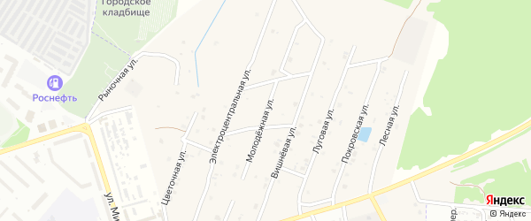 Молодежная улица на карте села Коржовки-Голубовки Брянской области с номерами домов