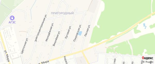 Покровская улица на карте села Коржовки-Голубовки Брянской области с номерами домов