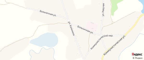 Улица Калинина на карте села Нового Ропска с номерами домов