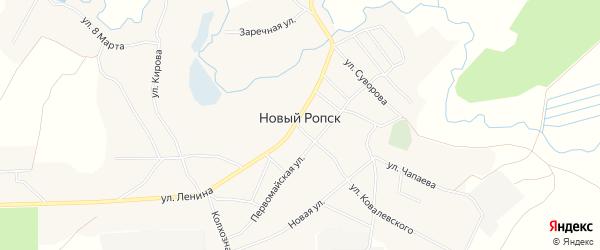 Карта села Нового Ропска в Брянской области с улицами и номерами домов