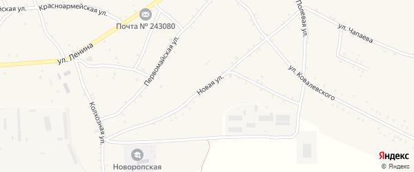 Новая улица на карте села Нового Ропска Брянской области с номерами домов
