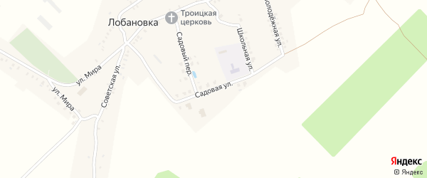Садовая улица на карте села Лобановки с номерами домов