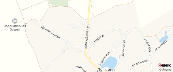 Молодежная улица на карте села Душкино с номерами домов