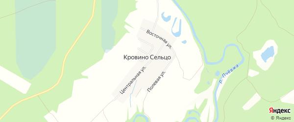Карта деревни Кровина Сельца в Ленинградской области с улицами и номерами домов