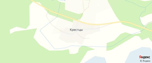 Карта деревни Крестцы в Ленинградской области с улицами и номерами домов