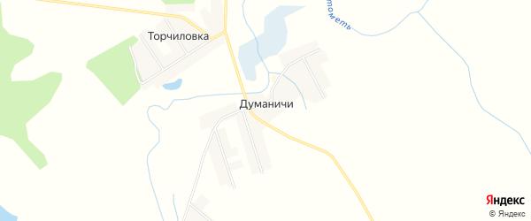 Карта деревни Думаничей в Смоленской области с улицами и номерами домов