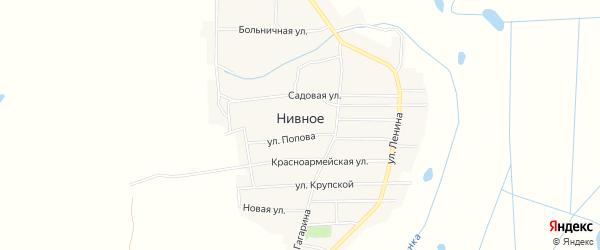 Карта Нивного села в Брянской области с улицами и номерами домов