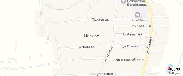 Безымянный переулок на карте Нивного села с номерами домов
