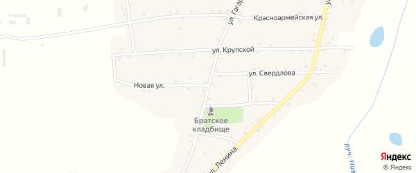 Улица Гагарина на карте Нивного села с номерами домов