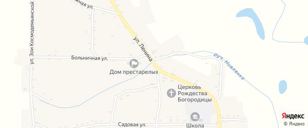 Улица Ленина на карте Нивного села с номерами домов