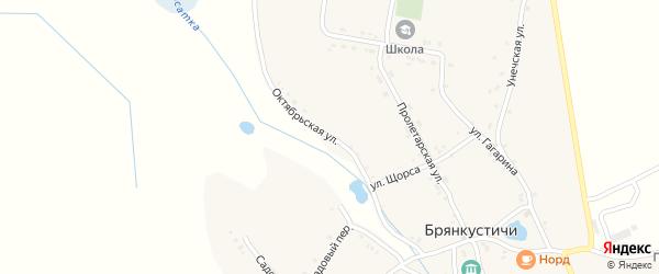 Октябрьская улица на карте села Брянкустичи с номерами домов