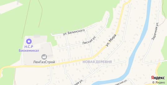 Лесная улица в Сясьстрое с номерами домов на карте. Спутник и схема онлайн