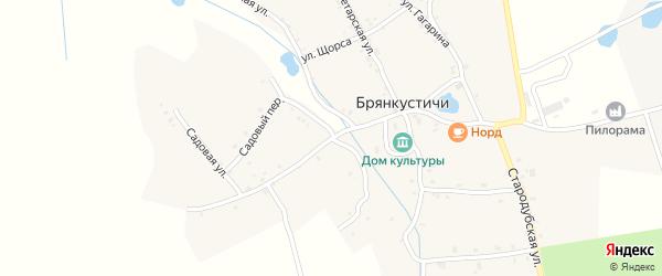 Заречная улица на карте села Брянкустичи с номерами домов