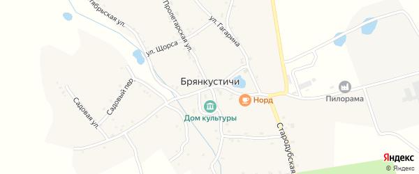 Колхозная улица на карте села Брянкустичи с номерами домов