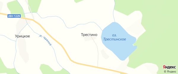 Карта деревни Трестино города Осташкова в Тверской области с улицами и номерами домов