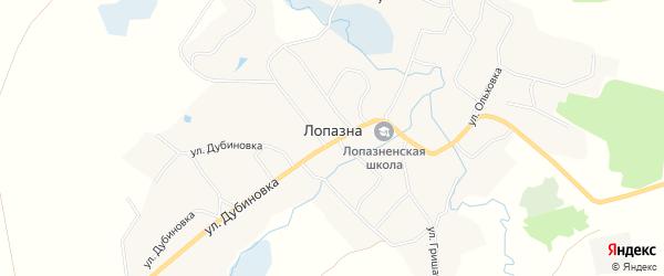 Карта села Лопазны в Брянской области с улицами и номерами домов
