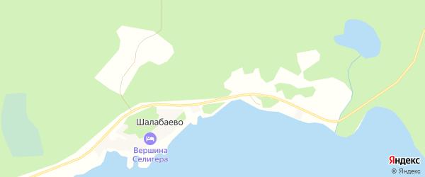 Карта деревни Подгорья города Осташкова в Тверской области с улицами и номерами домов