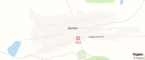 Улица Суворова на карте деревни Цинки с номерами домов