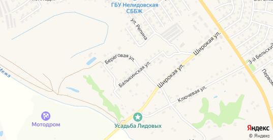 Балыкинская улица в Нелидово с номерами домов на карте. Спутник и схема онлайн